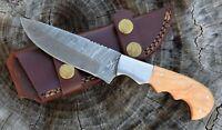 "Custom Handmade Damascus Steel Hunting, EDC knife 8"" Full Tang Wood Handle wd009"