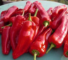 0.1g (env. 15) sweet pepper seeds komtesa h fruits pourraient croître jusqu'à 110g