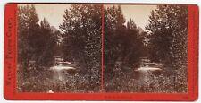 Rare Stereoview Photo - Watkins - Merced River Yosemite Park California 1865