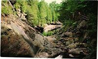 Vintage Postcard - Natural Stone Bridge & Caves Pattersville New York NY #3808