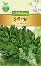 Schnittsellerie 'Gewone Snij' - Apium graveolens, Sellerie Samen, 4988