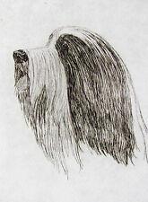 Geoffrey Lasko - Bearded Collie - Listed Artist Etching -S&N - Free Ship