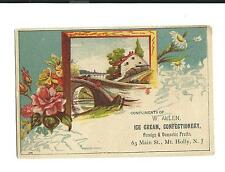 Old Trade Card W Allen Ice Cream Confectionery Domestic Fruits Mt Holly NJ