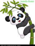 panda-home