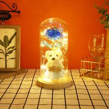 Forever Bear Rose Lamp In Glass Dome LED Light Mother's Day Decor Festival Gift