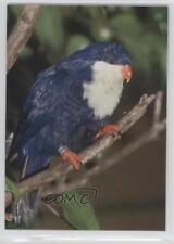 1993 CARDZ San Diego Zoo #64 Tahitian Blue Lory Non-Sports Card 0b6