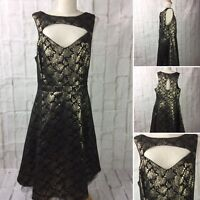 City Chic Size M fit N Flare Gold & Black Dress in Poly Cotton & Lurex