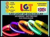 LED Dog Pet Collar Flashing Luminous Adjustable Safety Light Up Nylon FREE POST