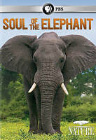 Nature: Soul Of The Elephant (2015, DVD New)