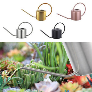 1.3L Indoor Small Watering Can Stainless Steel Long Narrow Spout for Plants AU