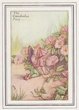 CICELY MARY BARKER c1930 THE CONVOLVULUS FAIRY Painting Vintage Art Book Print