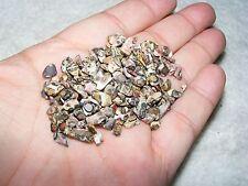 2000 X leopardo Jaspe Tumblestones Mini Chip CRYSTAL 3mm-5mm Gema Lote