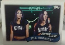 2018 TOPPS HERITGE WWE TAG TEAM INSERT CARD THE IICONICS NO. TT-17