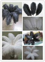 Wholesale! Beautiful ostrich feathers black / white 6-24 inches 15-60 cm