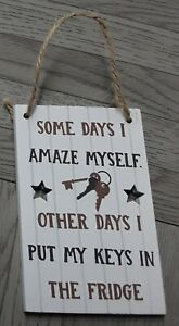 Some Days I Amaze Myself Other Days I Put My... Wooden Hanging Sign Humour Funny