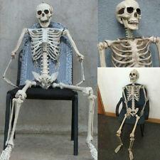 Halloween Skull Bones Full Size Human Skeleton Popular Party Creative Decoration