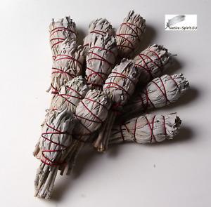Batonnets de Sauge blanche - lot de 12 - batons / empaqueter / ballot / Encens W