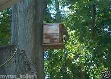 3=FOX, GRAY. Squirrel house, Nesting box. Ohio quality