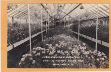 Real Photo Postcard RPPC- Chrysanthemum Show Sioux Falls SD Canedy's Camera Show