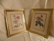 Vintage Rose Prints Framed Matted Rosa centifolia Rosa Semperfiorens French