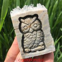 1pc Natural cluster owl skull quartz crystal carved point specimen reiki healing