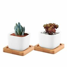 2 Pcs Small Succulent Plant Pot White Ceramic Cactus Planter With Wooden Tray