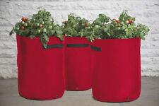 2 haxnicks Tomate plantadores growbags 3-cane apoyo bolsillos Rojo