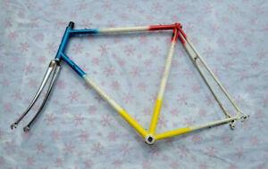 Vtg Batavus Professional Bike frame / reynolds 531 / 61 cm / Lugged / road bike