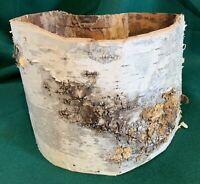 White Birch Bark Basket hand crafted Native American Indian Minnesota Wood Base