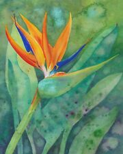 """Bird of  Paradise, Original Acrylic Painting """"Glorious #5"""" In Watercolor Style"""