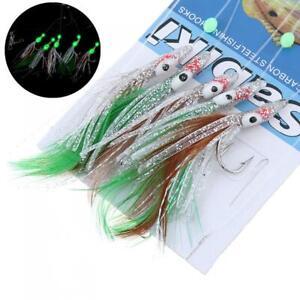 5 in 1 Luminous Sabiki Shrimp Bait Fishing String Lures with Jig Hook Feather