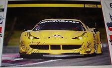 Le Mans 2013 WEC JMW Dunlop Motorsport Ferrari GTE PRO #66 Signed Poster No1