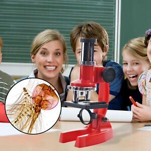 300X Microscope Kit Children Scientific Instruments Toy with Dropper Magnifier