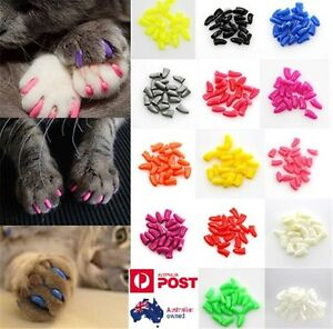 20pcs & 1 Glue Soft Cat Nail Caps Pet Claw Covers Paw Protective Mult-color