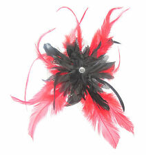 fascinator black and red feather mounted on a comb, weddings, races, ladies day