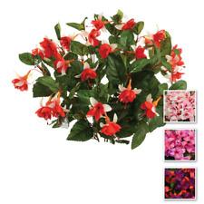 "Artificial Silk Flowers Bush / Plant Fuchsia Red/Cream 18"" Tall x12 Branches"