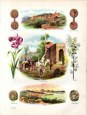 ANTIQUE BIBLE COLOUR PLATES - BETHLEHEM, FLOWERS, COINS & A MARRIAGE PROCESSION