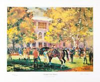 Equine Equestrian Prints by New Zealand Artist Peter Williams- Sunlight &Shadows