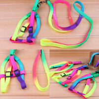 Adjustable Colorful Pet Dog Puppy Rabbit Nylon Harness Collar Leash Lead Strap