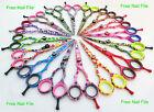 Professional Hairdressing Hair Cutting Barber Scissors Beautiful MultiColour 5.5