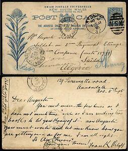 New South Wales 1895 Postkarte nach Algerien Frankreich Saigon Laos Kambodscha 3