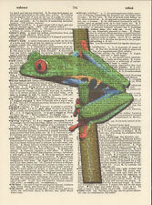 Green Red Blue Tree Frog Altered Art Print Upcycled Vintage Dictionary Page