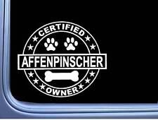 """Certified Affenpinscher L332 Dog Sticker 6"""" decal"""