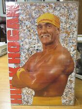 Vintage WWF Hulk Hogan Hulkamania  Car Garage poster 1993 164