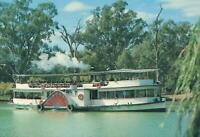 PADDLE STEAMER MELBOURNE on the MURRAY RIVER POSTCARD - EXCELLENT UNUSED