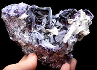 440.7g Natural Purple Green Fluorite&Pyrite Crystal Cluster Mineral Specimen