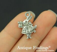 14pcs Mr.Rabbit Metal Charm Antique Tibetan Silver Charm Pendant SC395