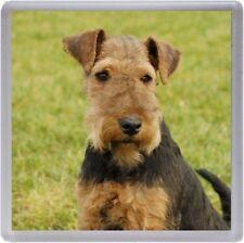 Welsh Terrier Coaster No 2 by Starprint