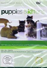 DVD NEU/OVP - Puppies & Kittens - 187 Minuten Katzenbabies und Hundewelpen