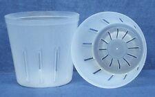Clear Plastic Pot for Orchids 3 inch Diameter - Quantity 2